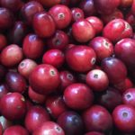 Rutgers Researcher Discusses the Health Benefits of Cranberries