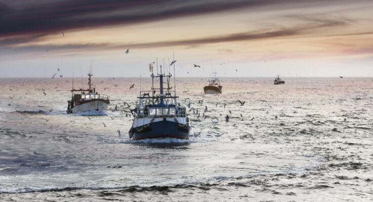 Marine Fisheries Will Not Offset Farm Losses after Nuclear War