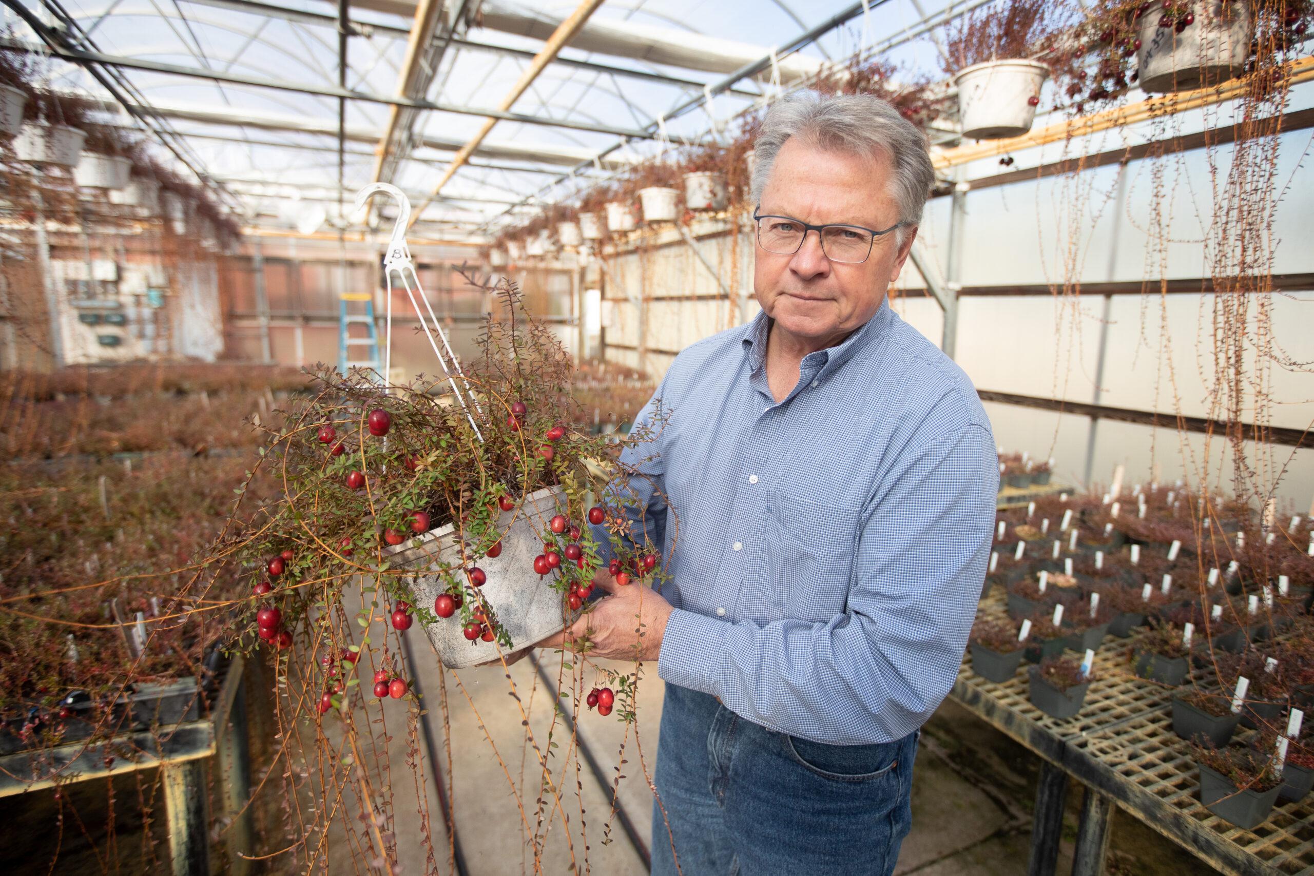 Rutgers professor names 'Vasanna' cranberry for parents