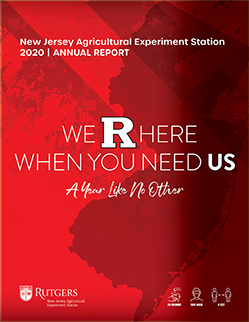 Cover of 2020 NJAES Annual Report.