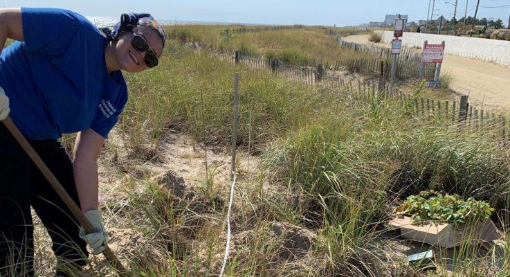 Senior Story: Eva Popp (SEBS'21) Wins Young Botanist Award