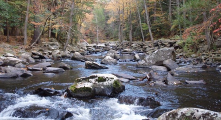Rutgers Awarded $305,000 Grant to Support Water Quality Protection and Improvements in the Delaware River Basin